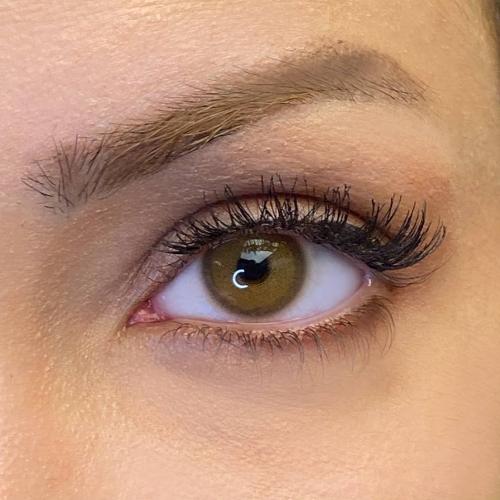 labella pixie brown milano haresiz yıllık lensi